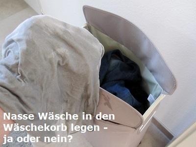 wäsche in wohnung trocknen schimmel
